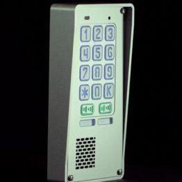 Domofon dwurodzinny z szyfratorem, natynkowy, Radbit