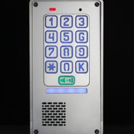 Domofon jednorodzinny z szyfratorem. Sterowanie furtka / brama